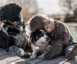 animal, baby boy, and dog image