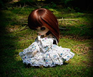 doll, forrest, and nature image