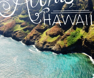hawaii, Aloha, and summer image