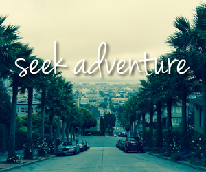 adventure and palm trees image