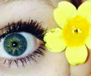 beauty, blue, and eye image