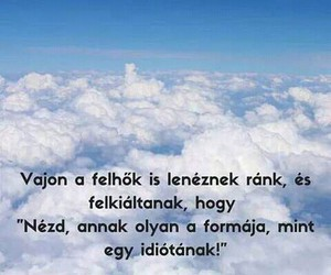quotes, hungarian, and idiot image