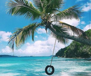 adventure, beach, and black image