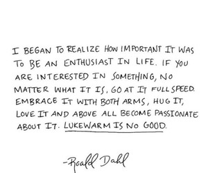 quotes, life, and passion image