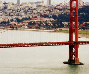 beauty, freedom, and golden gate image