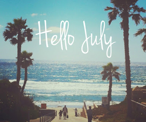 beach, july, and palm image