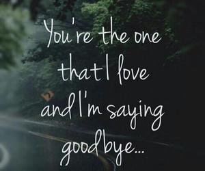 goodbye, say something, and christina aguilera image