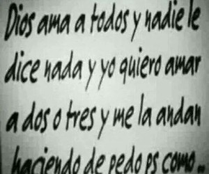 todos, amor, and frases image