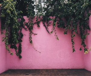pink, green, and nature image
