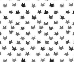 Cat Wallpaper And Background Image