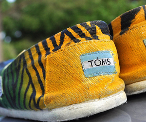 fashion and toms image