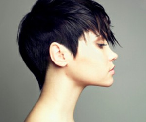 beautiful, shorthair, and blue image