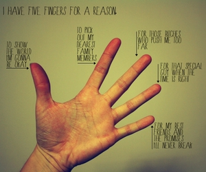 fingers and finger reason image