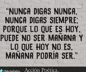 phrases, never say never, and nunca image