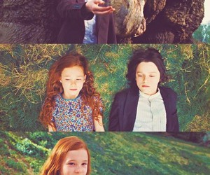 harry potter, severus snape, and lily potter image