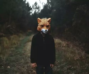 fox, indie, and vintage image
