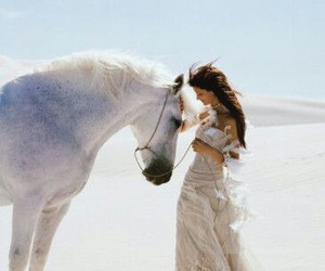 horse and white image