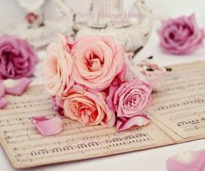 rose, flowers, and music image