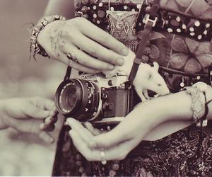 camera, canon, and photos image