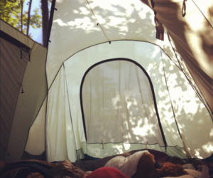 camping, nature, and tent image