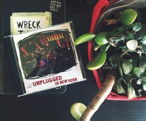 cactus, grunge, and kurt cobain image
