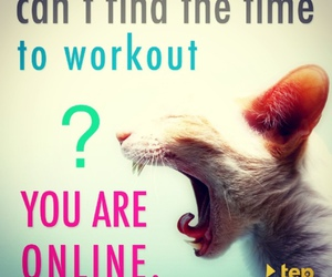 cat, fit, and fitness image