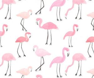 fondo de pantalla, flamingo, and iphone image