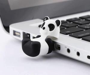 panda and usb image