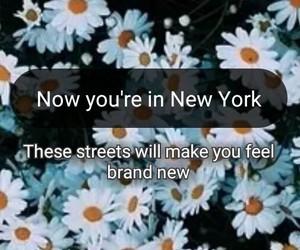 america, new york, and tumblr image