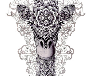 giraffe, mandala, and animal image