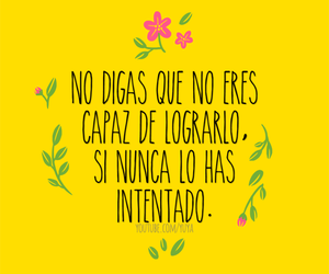 frases and frases image