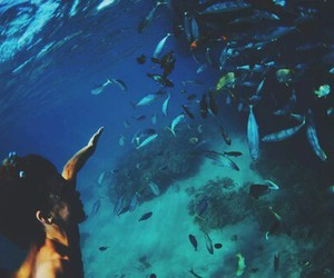 fish, ocean, and summer image