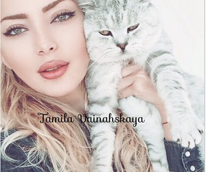 beauty, cat, and style image
