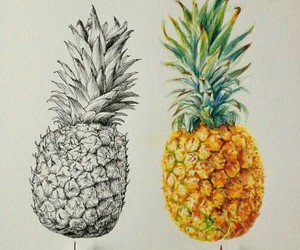 pineapple, art, and drawing image