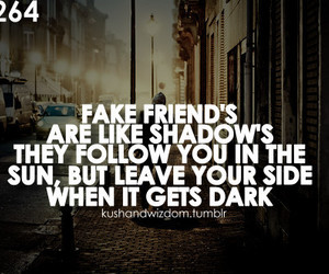 fake, friends, and quote image