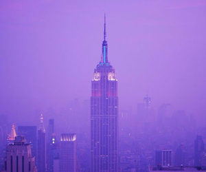 purple, city, and building image