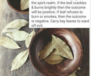 spell and witch image