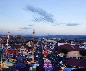 del mar fair, summer nights, and city fair image