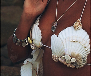 summer and shell image