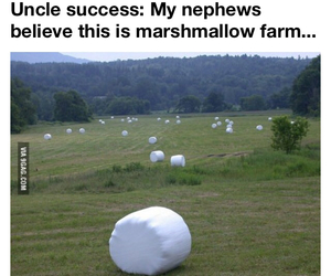 farm, funny, and lol image