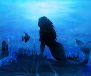 mermaid and blue image