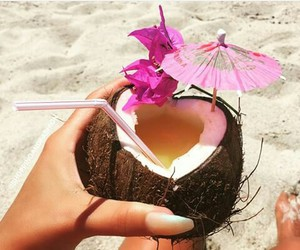 coconut, drinks, and food image