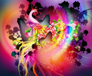 phoenix and colorful image
