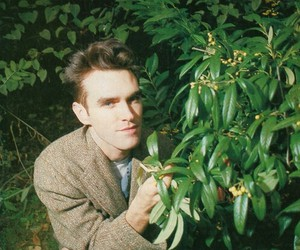 morrisey and the smiths image