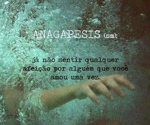 agua, quotes, and brazilian quotes image