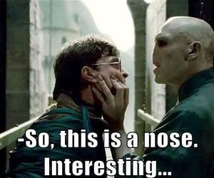 harry potter, voldemort, and nose image