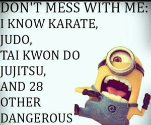 dangerous, karate, and minion image