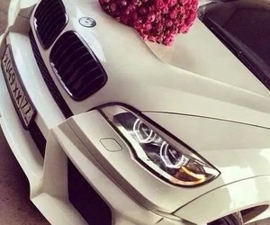 car, bmw, and rose image