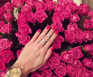 rose, flowers, and nails image