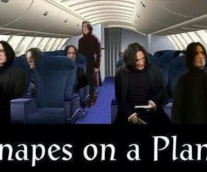 snape, plane, and funny image